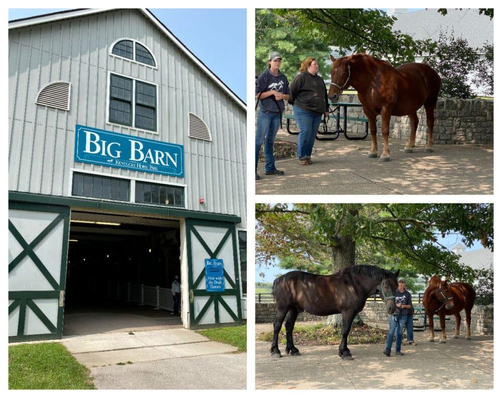 the-big-barn-at-kentucky-horse-park