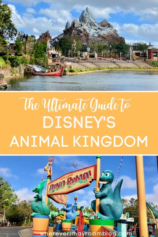 ultimate-animal-kingdom-guide-disney