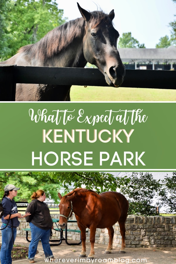 what-to-expect-at-the-kentucky-horse-park